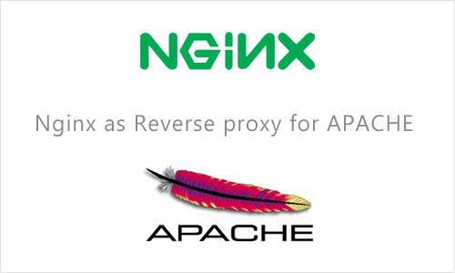 OpenNET: статья - Использование Nginx Как Reverse-Proxy