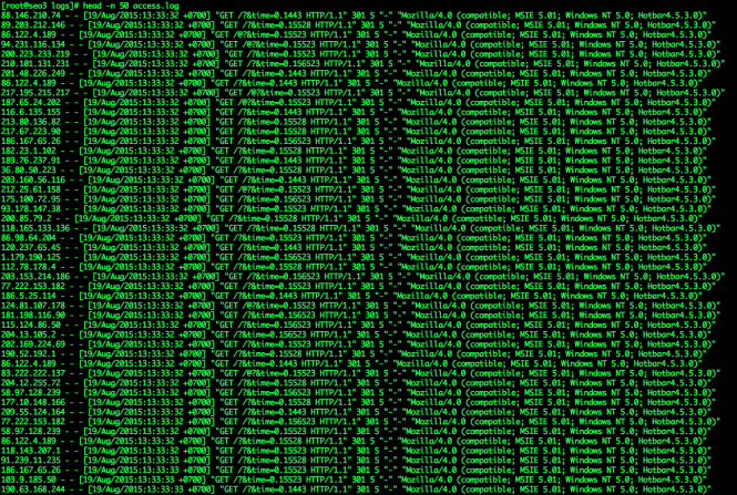 DDoS access.log